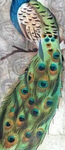 Peacock Capiz Shell Long Box