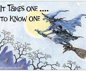 It Takes One to Know One Witch Refrigerator Magnet